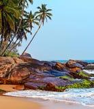斯里南卡 免版税图库摄影