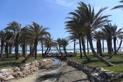 洛斯阿拉莫斯海滩托雷莫利诺斯角安大路西亚西班牙 免版税库存照片