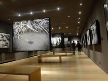 斯雷布雷尼察画廊在萨拉热窝 免版税库存图片