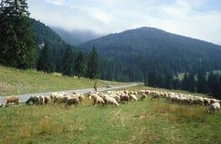斯洛伐克山 免版税库存图片
