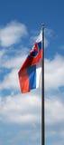 斯洛伐克共和国的旗子 免版税库存图片