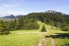 从斯洛伐克看见的三个冠山 免版税库存图片