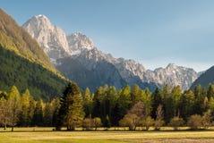 斯洛文尼亚阿尔卑斯 免版税图库摄影