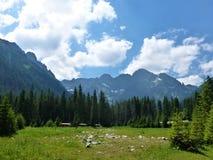 斯洛文尼亚风景的,山景朱利安阿尔卑斯山 库存照片