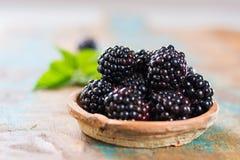 新与叶子的夏天狂放的黑莓 免版税库存照片