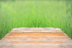 新与绿色bokeh和阳光和木头地板的春天绿草 秀丽自然本底 文本的拷贝空间 免版税图库摄影