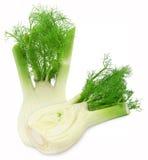 新两cutted fennels 库存照片
