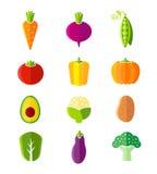 新健康菜平的样式有机象 库存图片