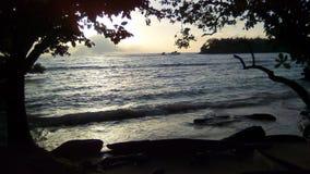 新几内亚黎明 免版税库存照片