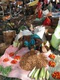 新出售部族蔬菜妇女 免版税图库摄影
