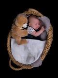 新出生休眠 免版税图库摄影