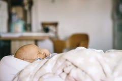 新出生的健康白天睡眠 婴孩茧的一个婴孩在屋子里睡觉 免版税图库摄影
