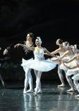 新出生的公主Ojta和王子得到together-The天鹅湖芭蕾天鹅湖前个场面  图库摄影