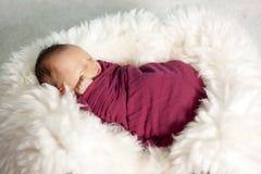 新出生的女婴纵向  库存照片