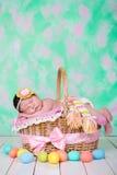新出生的女婴有在柳条筐的美梦 背景美丽的复活节彩蛋节假日污点 库存图片