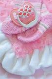 新出生的女婴的初生婴儿用品 库存照片