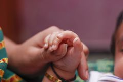 新出生的婴孩手 免版税库存图片