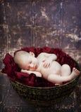 新出生的婴孩 免版税库存照片