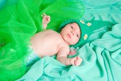 新出生的子项 免版税库存照片