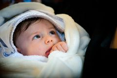 新出生的特写镜头画象 免版税库存图片