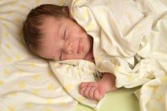新出生的睡眠 免版税库存图片