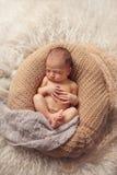 新出生的睡觉的男婴 图库摄影