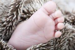 新出生的英尺 免版税库存照片
