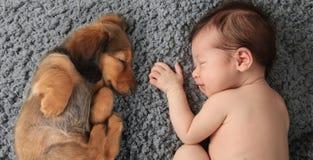 新出生的婴孩和小狗 免版税库存图片