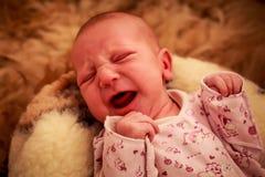 新出生的婴孩在幼稚紧身衣裤的羊毛枕头哭泣 库存图片