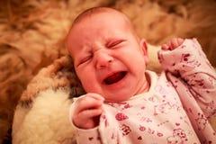 新出生的婴孩在幼稚紧身衣裤的羊毛枕头哭泣 免版税库存图片