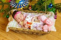 新出生的婴孩在篮子睡觉 图库摄影