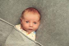 新出生的婴孩是9句几天年纪谎言被包裹在灰色背景 库存图片