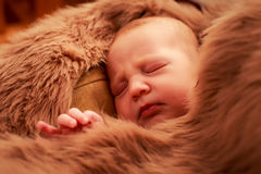 新出生的婴孩睡觉面孔特写镜头画象  免版税图库摄影