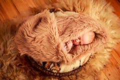 新出生的婴孩睡觉面孔画象用小手 库存图片