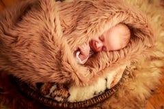 新出生的婴孩睡觉面孔画象用小手 免版税库存照片