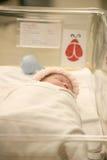新出生睡着的婴孩毯子的医院 库存照片