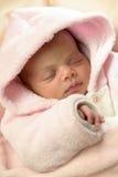 新出生婴孩睡觉 免版税库存照片