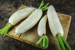 新切片白色萝卜,健康vegatable 图库摄影