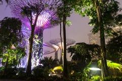 新加坡。滨海湾公园 库存照片