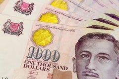 新加坡一千美元货币注意特写镜头 图库摄影