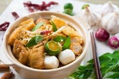新加坡咖喱面条 免版税库存照片