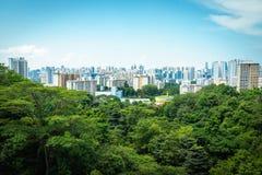 新加坡市摩天大楼地平线和看法汉德尔逊brid的 图库摄影