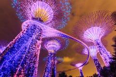新加坡庭院 免版税库存图片