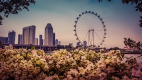 新加坡日落 库存图片