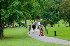 新加坡植物园的人们在新加坡 图库摄影