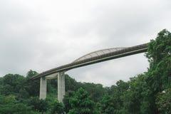 新加坡汉德尔逊在登上法伯公园的波浪桥梁 图库摄影