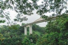 新加坡汉德尔逊在登上法伯公园的波浪桥梁 免版税库存图片