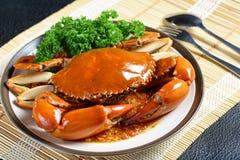 新加坡辣椒泥螃蟹 库存照片