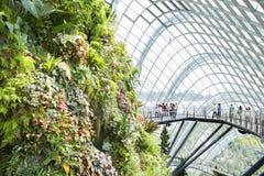新加坡音乐学院:花圆顶和云彩森林 库存图片