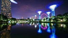 新加坡飞行物和Supertree树丛反射 影视素材